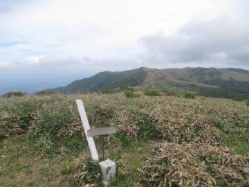 大川嶺山頂