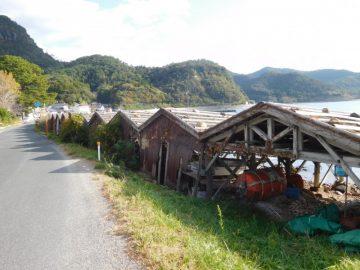 道路側から見た舟小屋群