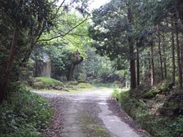 野田登山口への林道