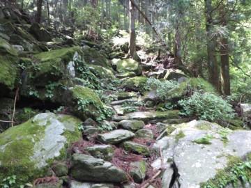 赤星山登山道