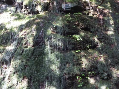 プチ白糸の滝