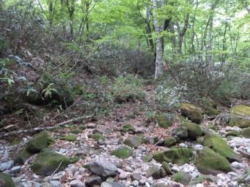 烏ヶ山登山道