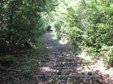 多鯰ヶ池自然探勝路