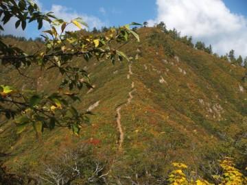 下台倉山までの登山道