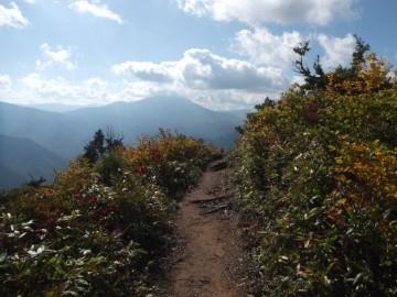 台倉山までの縦走路