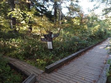 燧裏林道と燧ケ岳登山道の分岐