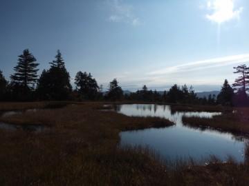 広沢田代の池塘