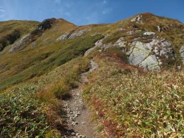 駒ノ小屋に向けての登山道