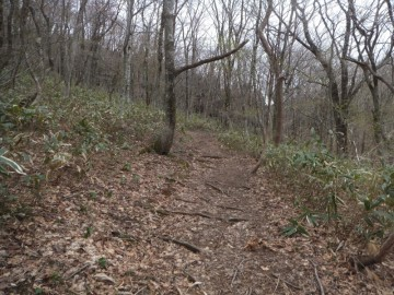 吉和冠山の登山道