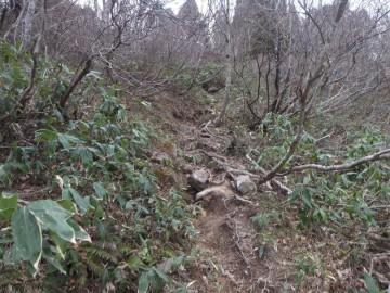 恐羅漢山登山道