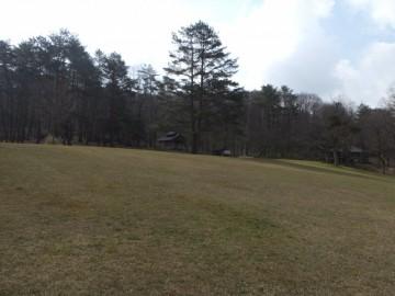 芝生のフリーサイト