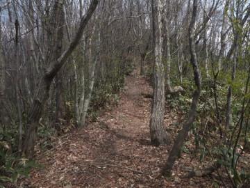 聖山-高岳縦走路