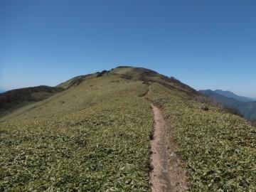 笹ヶ峰山頂が見えてきました。気持ちのいい縦走路。
