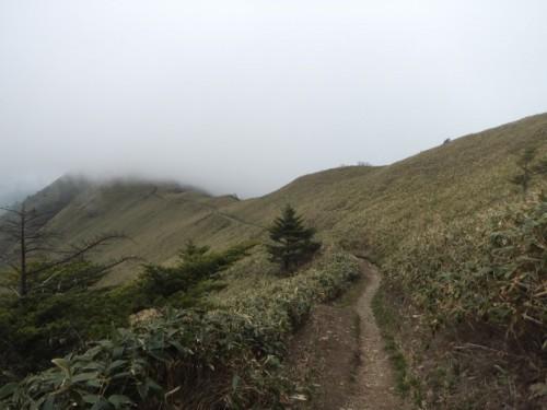 伊予富士への縦走路