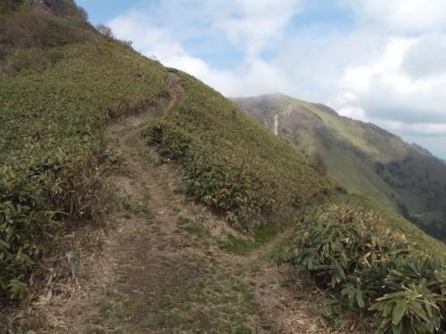 縦走路と伊予富士登山口方面への分岐