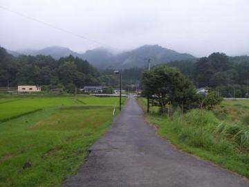 矢岳駅前。何もない自然です。