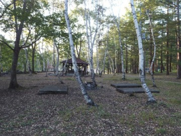 宝台樹キャンプ場のフリーサイト