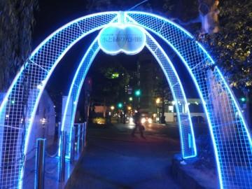 水と緑の光回廊のゲート的なイルミネーション