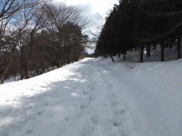 三平山への林道