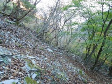 非常に分かりにくい登山道