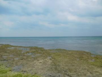 黒島灯台のところから見る海