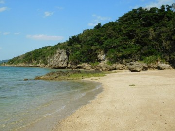 左に進んだ先にある砂浜