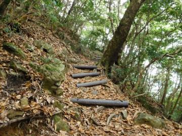 篠山の登山道
