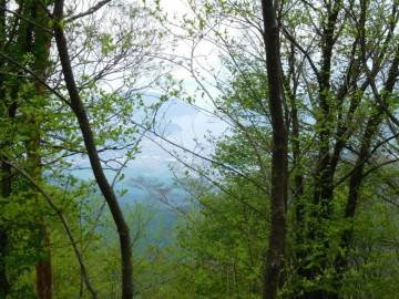 鬼ヶ城山の山頂横から見える景色