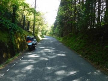 松の木峠への上り