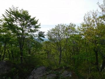 岩の上から見た景色