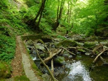 瀬戸の滝遊歩道