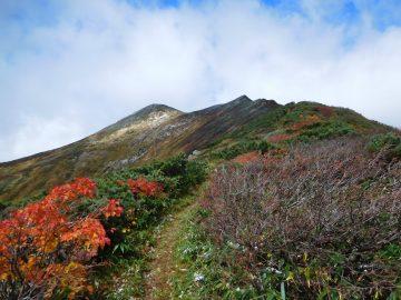 大朝日岳山頂と偽山頂