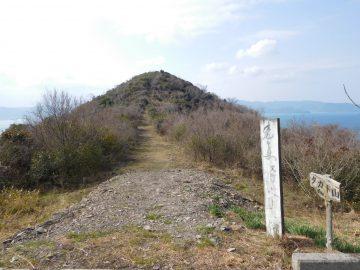 分岐から見る登山道