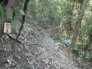 新しい登山道