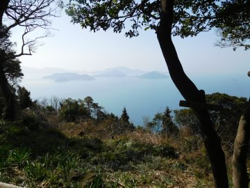 粟島展望所から見る粟島