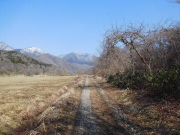 登山口付近の林道から望むアゼチ