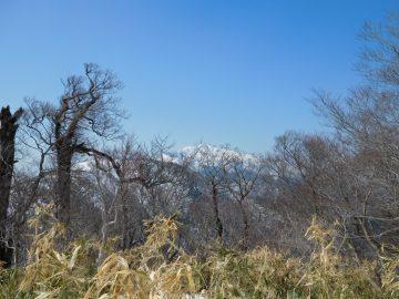 アゼチ山頂から大山を望む