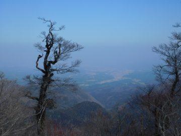 鳥取県方面を望む