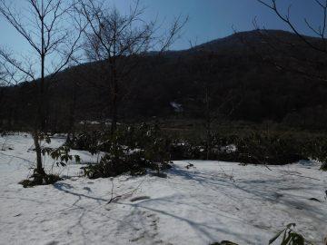 蛇ヶ乢湿原