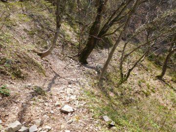 安蔵峠へ向けての登山道