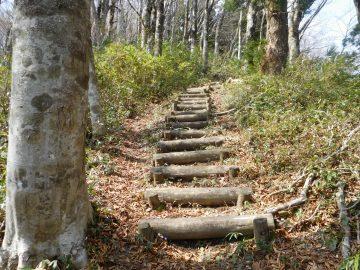 山頂へ向けての最後の登り
