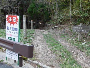 林道脇の安蔵峠へ直接向かう登山口