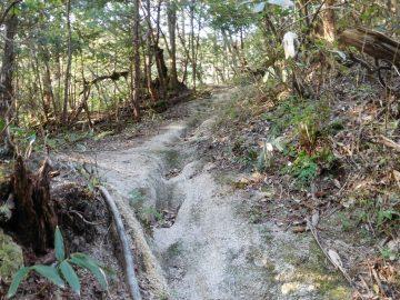 砂礫質の登山道