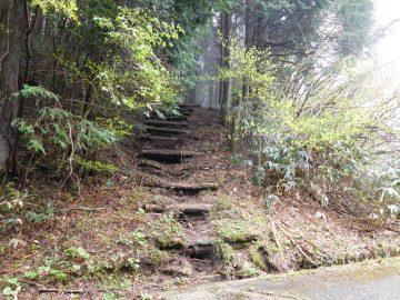 羅漢山への最短登山口