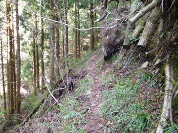 大神ヶ岳登山道