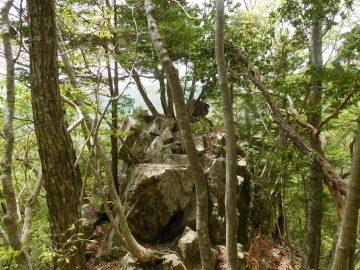 展望台の岩