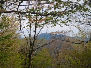 羅漢山を望む