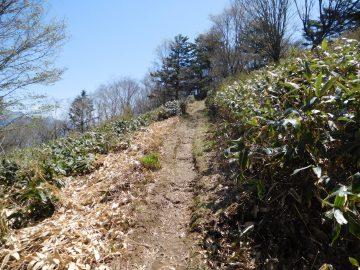 岩黒山登山道