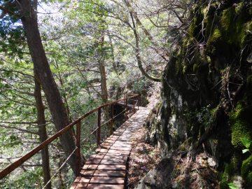 鉄橋の登山道