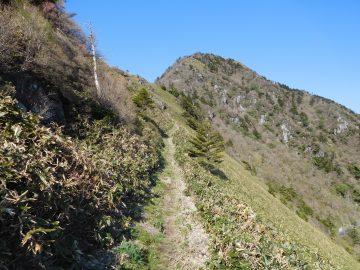 登山道から望む西黒森